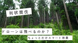 スマート林業 列状間伐でドローンは飛べるのか